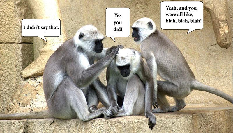monkey-talk