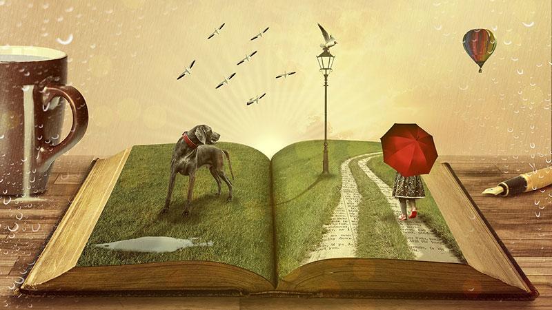 daydreaming daydream writer